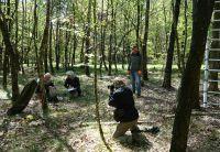 0016_Midden_in_het_bos