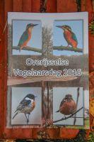 Overijsselse_Vogelaarsdag_2016_08